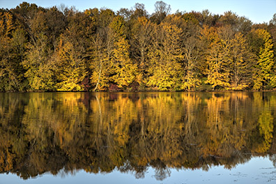 Fall Trees Along Lake Logan - Hocking Hills of Ohio - Hocking Hills Photography